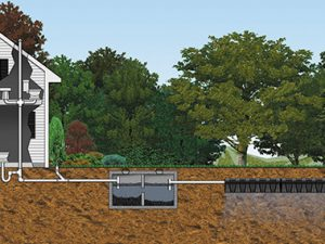6 Signs Of a Failing Septic System